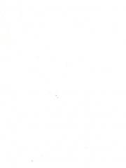 Rainier-White